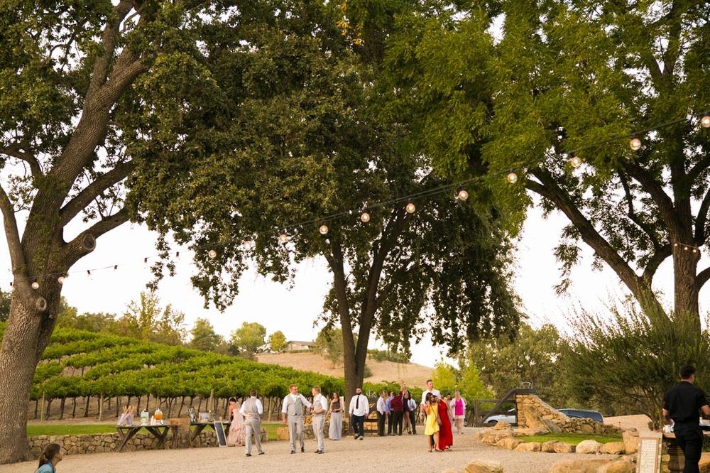 Hammersky Vineyards Wedding158.jpg