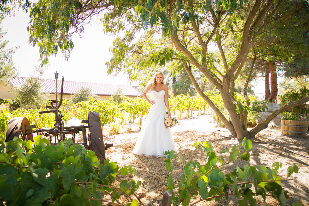 Still Waters Vineyard Paso Robles Wedding020.jpg