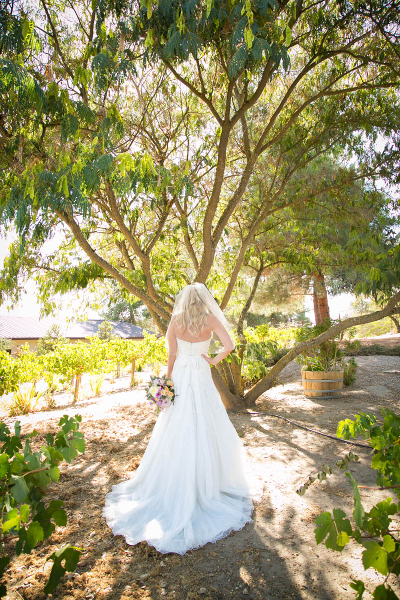 Still Waters Vineyard Paso Robles Wedding028.jpg