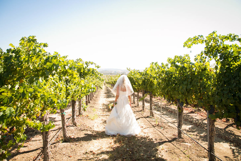Still Waters Vineyard Paso Robles Wedding034.jpg