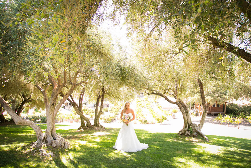Still Waters Vineyard Paso Robles Wedding050.jpg