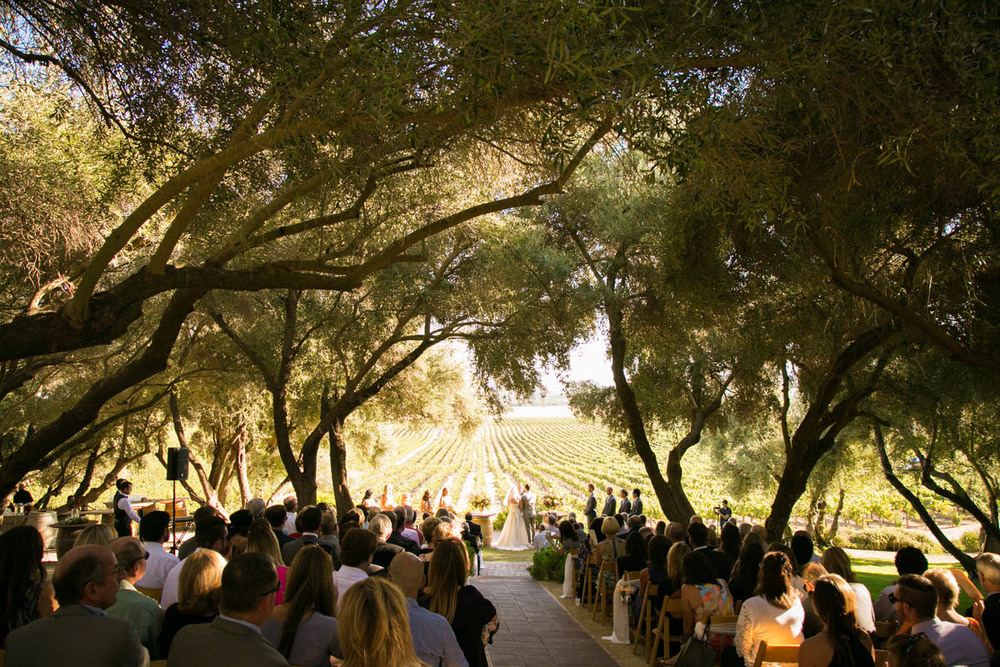 Still Waters Vineyard Paso Robles Wedding087.jpg