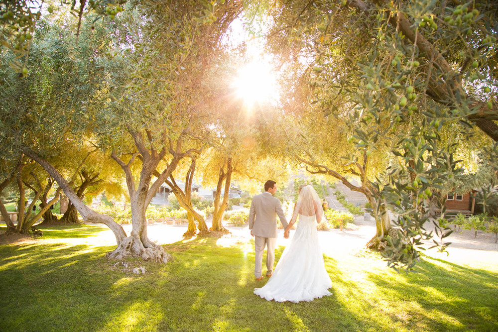 Still Waters Vineyard Paso Robles Wedding108.jpg
