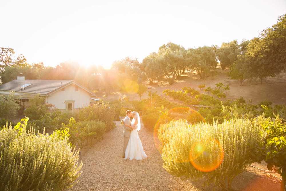 Still Waters Vineyard Paso Robles Wedding113.jpg