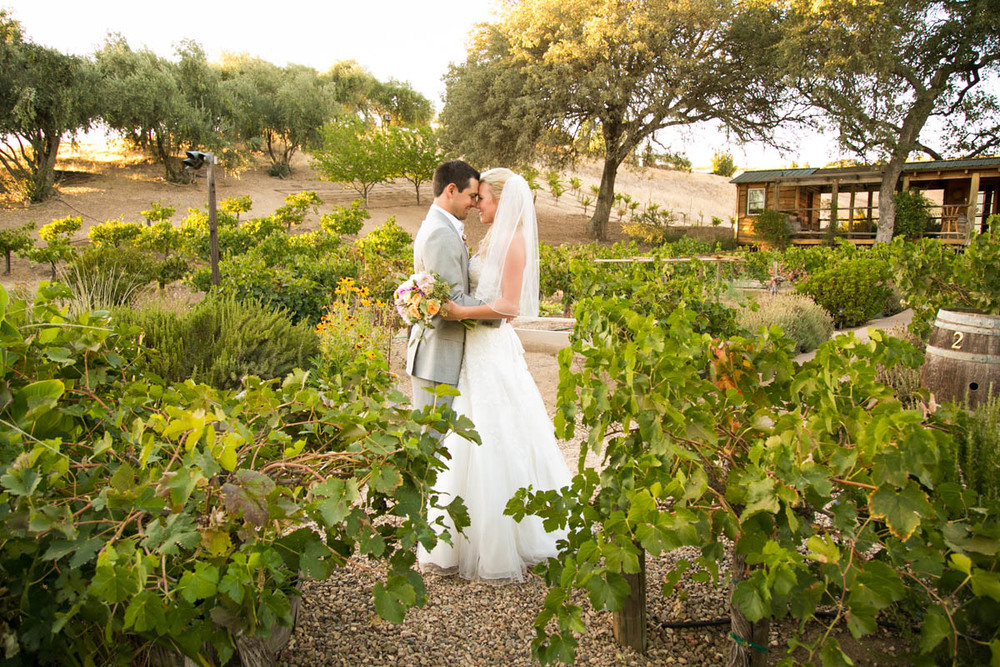 Still Waters Vineyard Paso Robles Wedding120.jpg