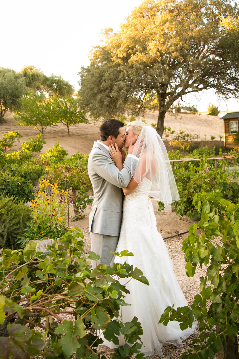 Still Waters Vineyard Paso Robles Wedding122.jpg