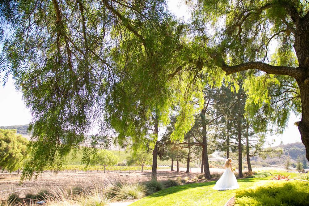 Greengate Ranch and Vineyard Wedding046.jpg