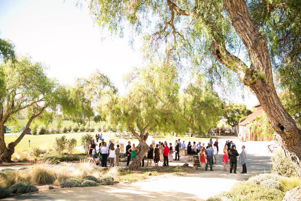 Greengate Ranch and Vineyard Wedding106.jpg