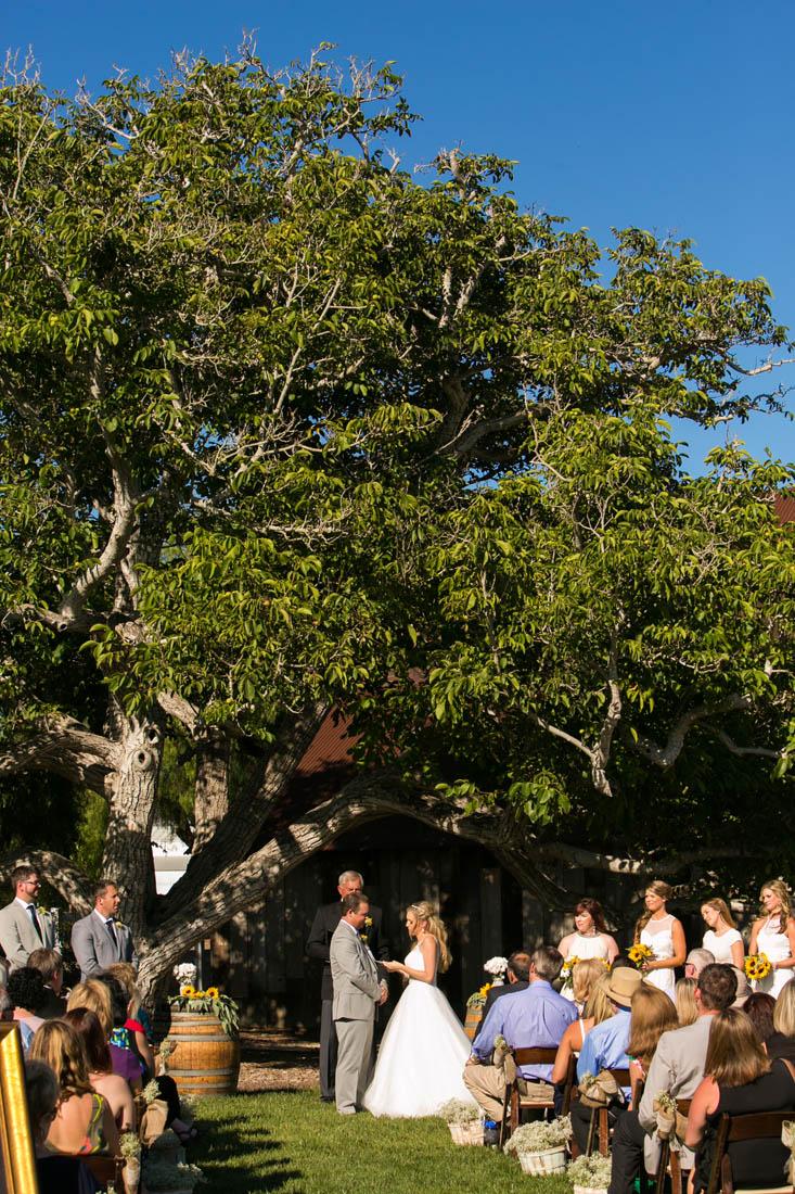 Greengate Ranch and Vineyard Wedding126.jpg