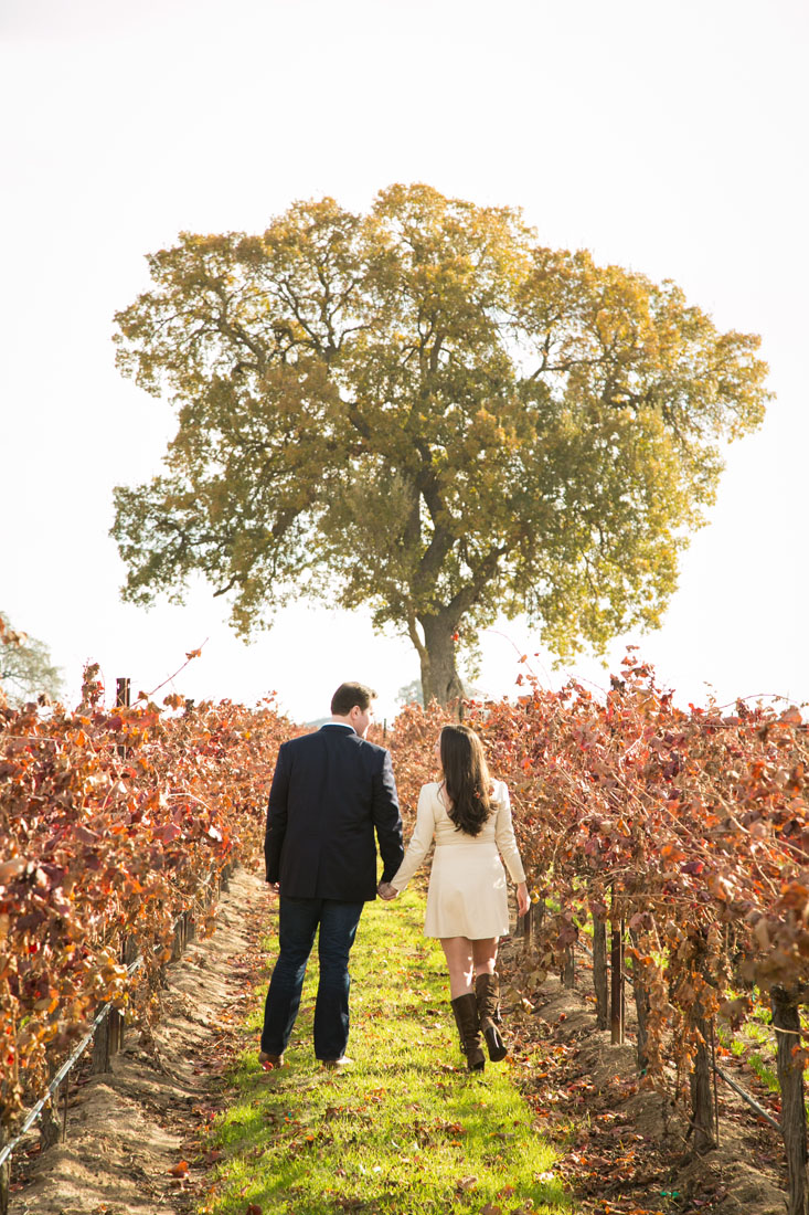 Paso Robles Engagement and Wedding Photography015.jpg
