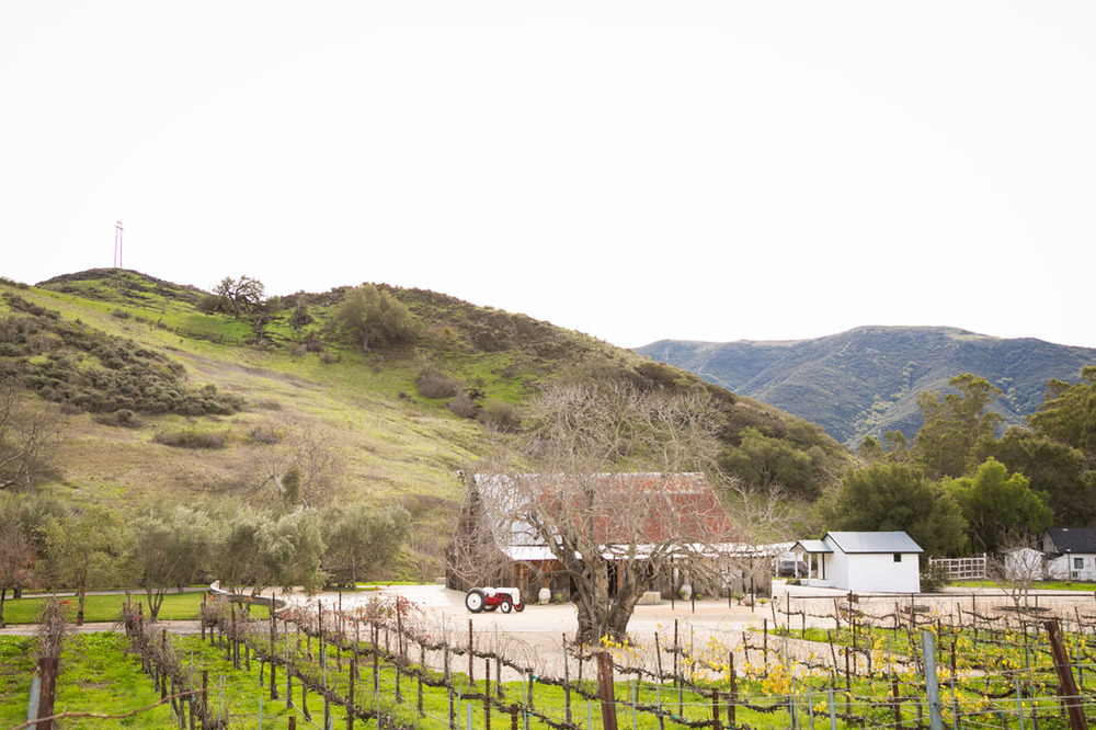 Paso Robles Wedding Photographer and Engagement Session001.jpg