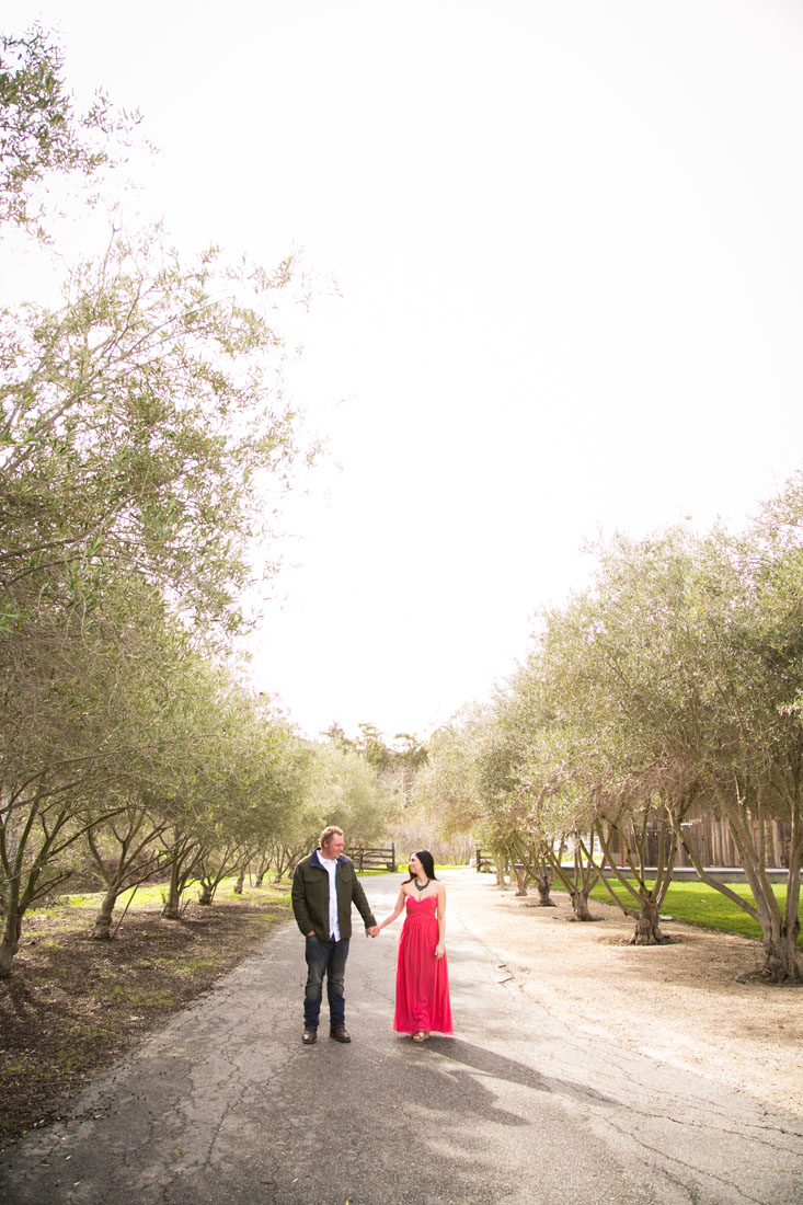 Paso Robles Wedding Photographer and Engagement Session004.jpg