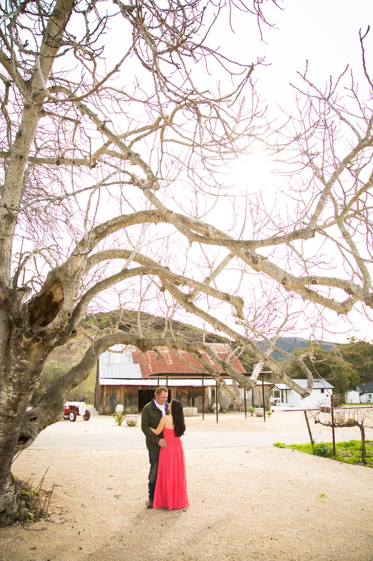 Paso Robles Wedding Photographer and Engagement Session022.jpg