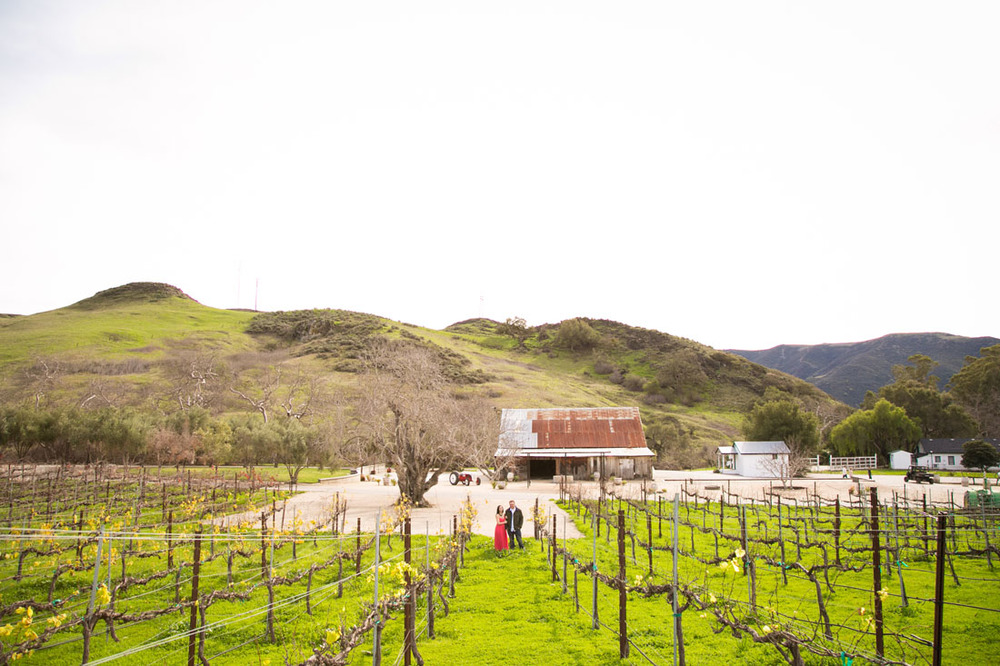 Paso Robles Wedding Photographer and Engagement Session029.jpg