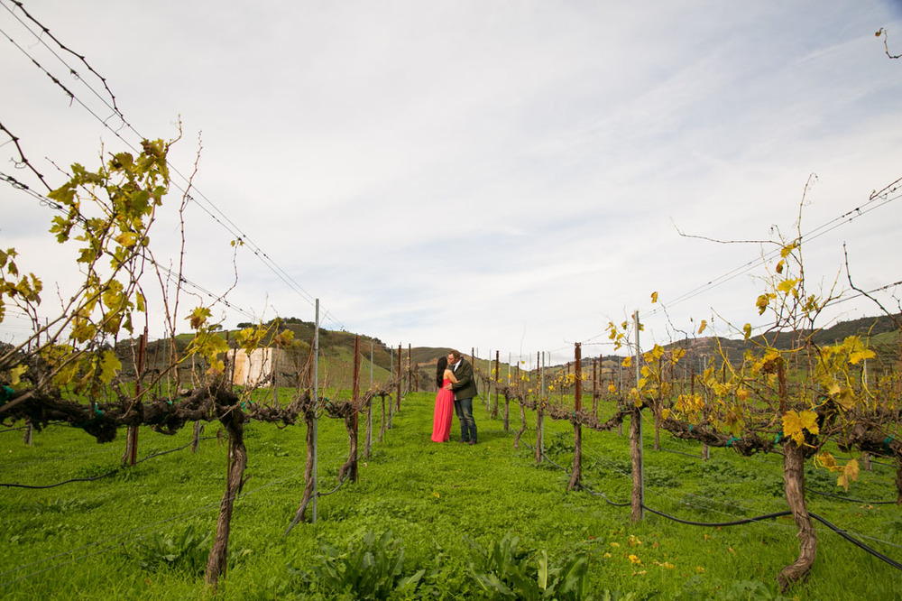 Paso Robles Wedding Photographer and Engagement Session045.jpg