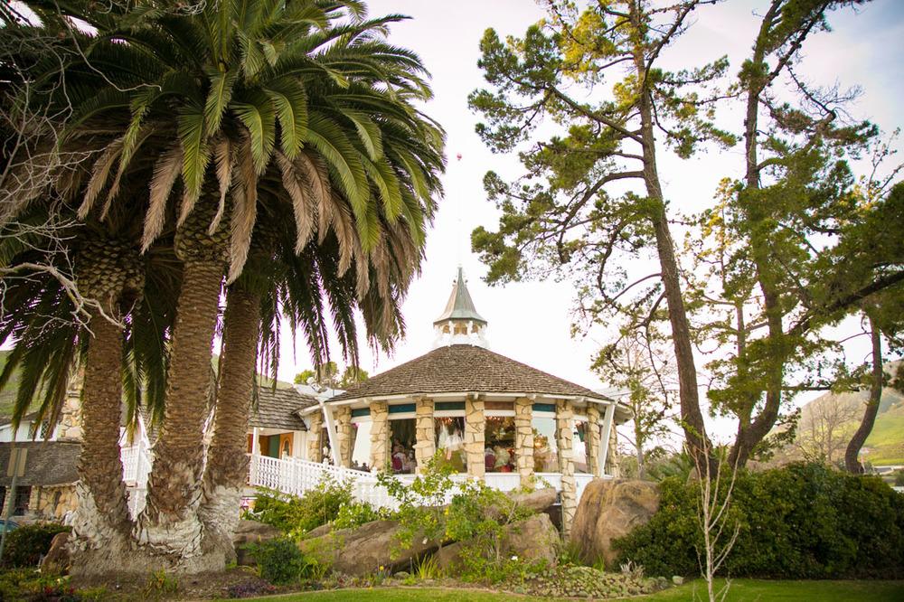 Paso Robles and San Luis Obispo Wedding Photographer 152.jpg