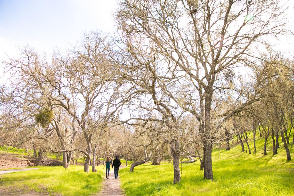Paso Robles and San Luis Obispo Wedding Photographer 001.jpg