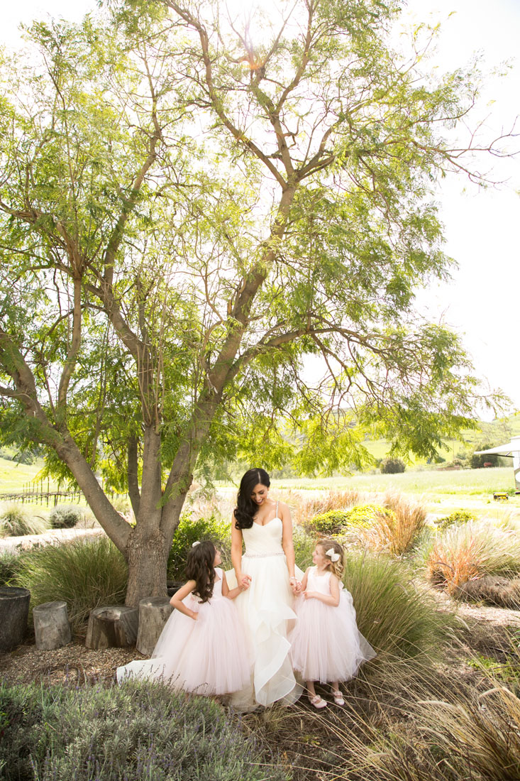 gorzeman wedding san luis obispo wedding photographer at higuera