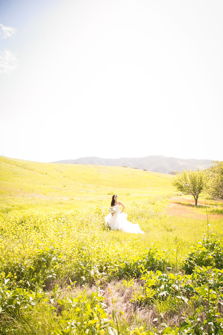 San Luis Obispo and Paso Robles Wedding Photographer 054.jpg