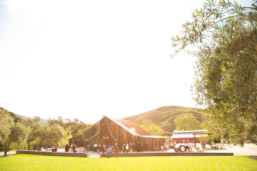 San Luis Obispo and Paso Robles Wedding Photographer 128.jpg