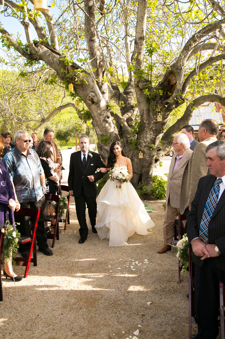 San Luis Obispo and Paso Robles Wedding Photographer 133.jpg