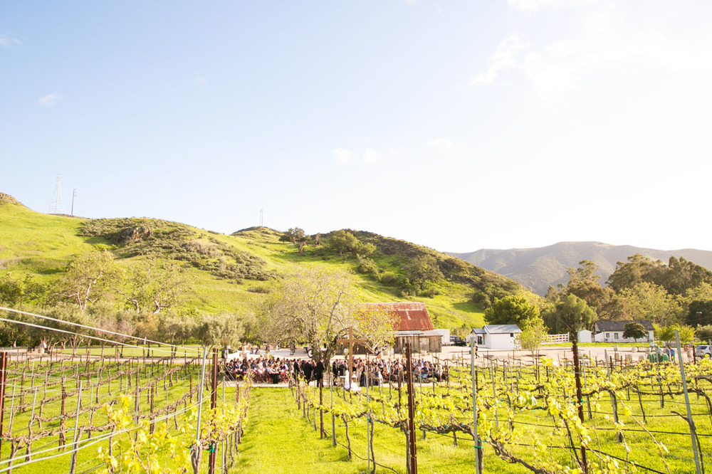 San Luis Obispo and Paso Robles Wedding Photographer 139.jpg