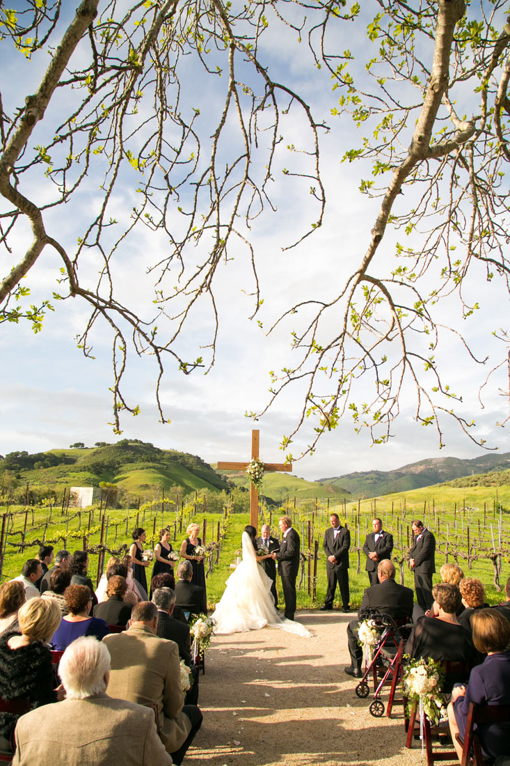 San Luis Obispo and Paso Robles Wedding Photographer 138.jpg