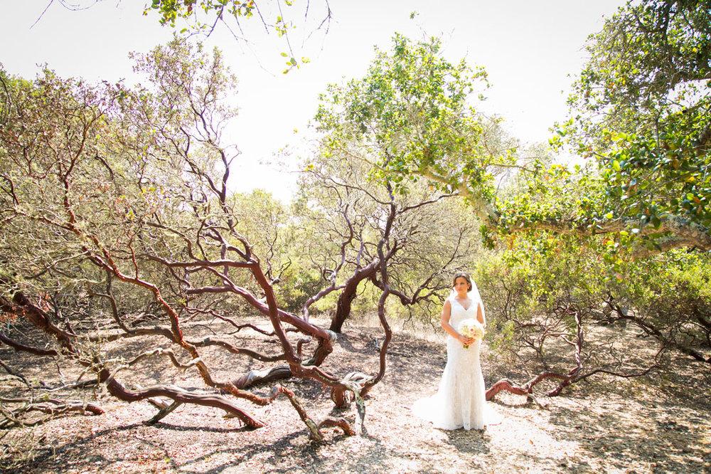 San Luis Obispo Wedding Photographer Tiber Canyon 200.jpg