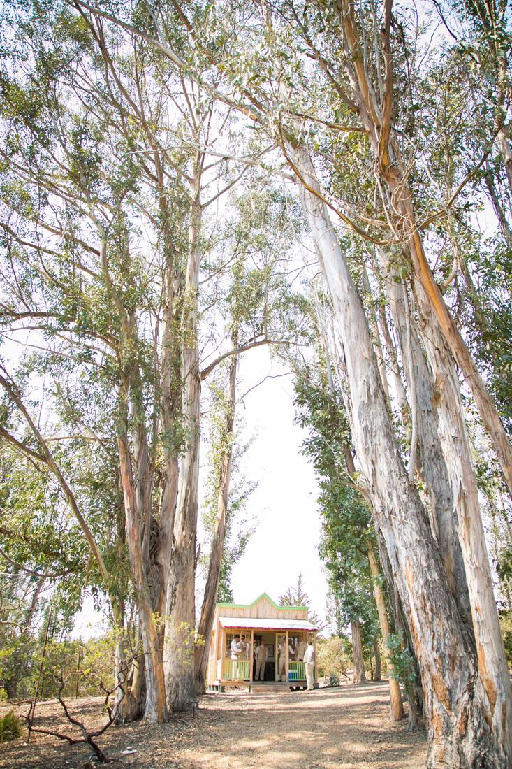 San Luis Obispo Wedding Photographer Tiber Canyon 211.jpg
