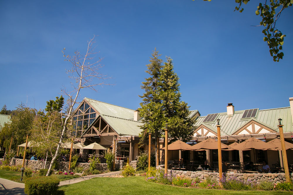 Yosemite Wedding Photographer Tenaya Lodge002.jpg