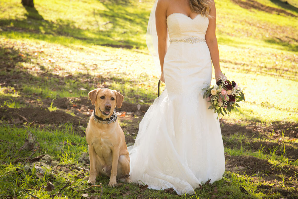 Paso Robles Wedding Photographer Opolo Vineyards 034.jpg