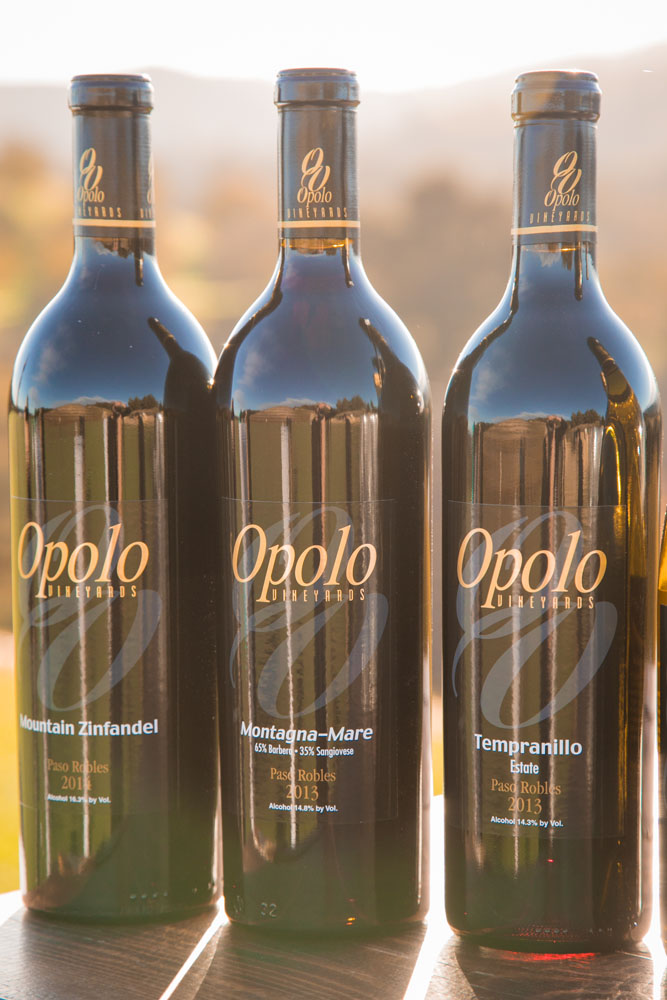 Paso Robles Wedding Photographer Opolo Vineyards 093.jpg
