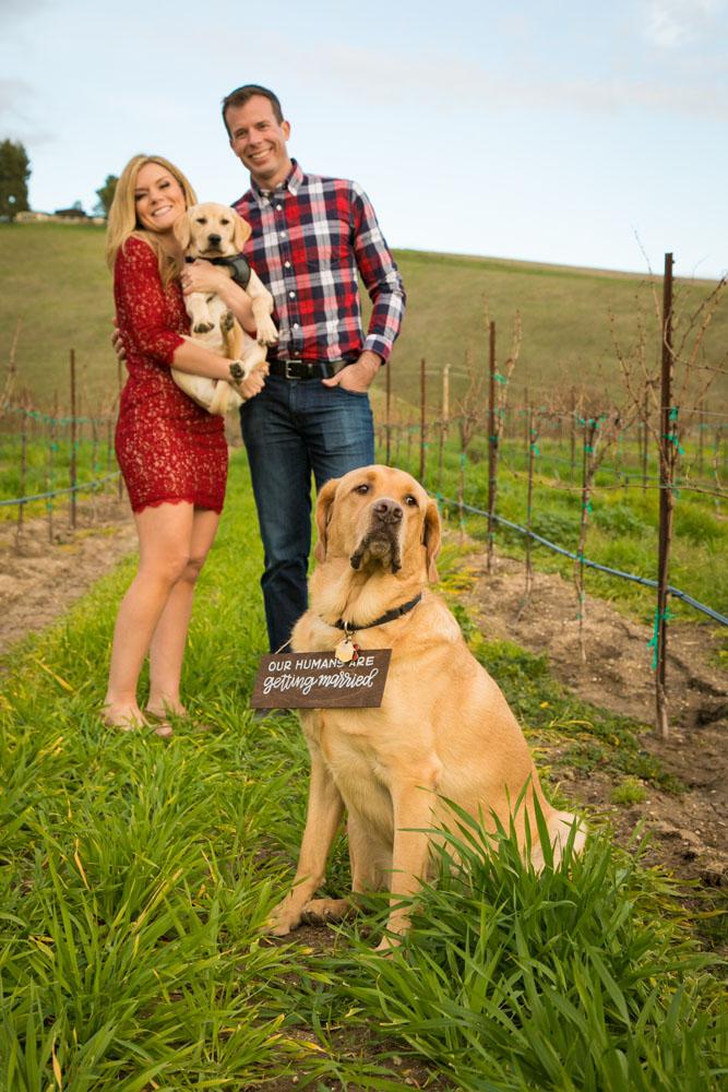 Paso Robles Wedding Photographer Villa San Juliette 081.jpg