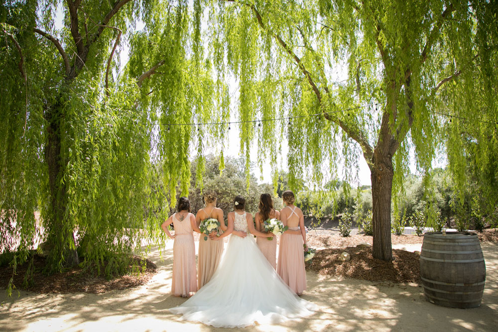Paso Robles Wedding Photographer Terra Mia Vineyards 013.jpg
