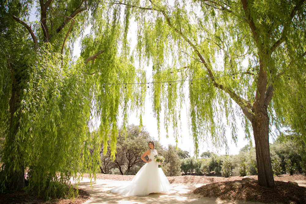 Paso Robles Wedding Photographer Terra Mia Vineyards 019.jpg