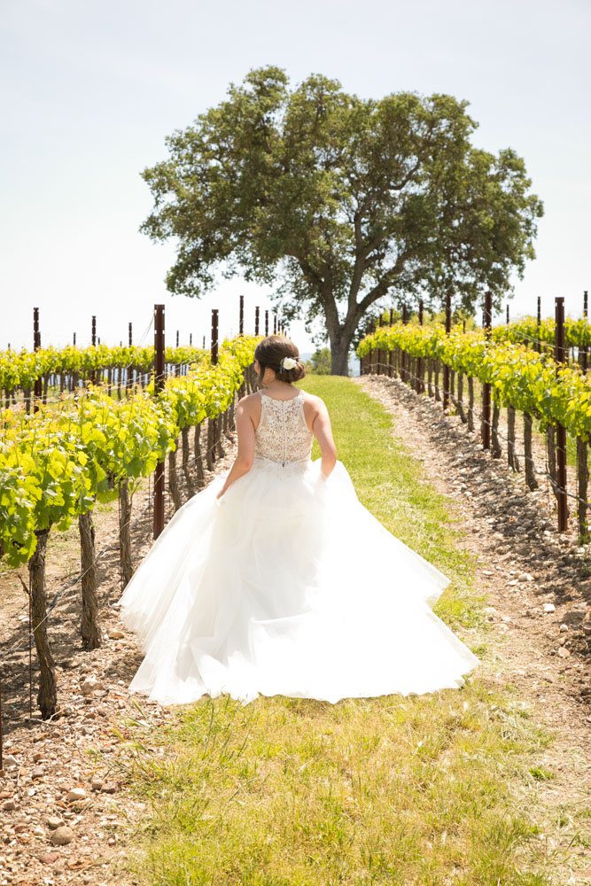 Paso Robles Wedding Photographer Terra Mia Vineyards 028.jpg