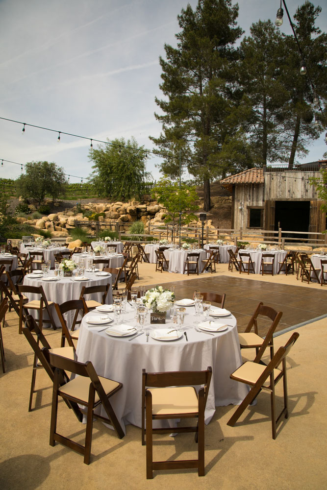 Paso Robles Wedding Photographer Terra Mia Vineyards 068.jpg