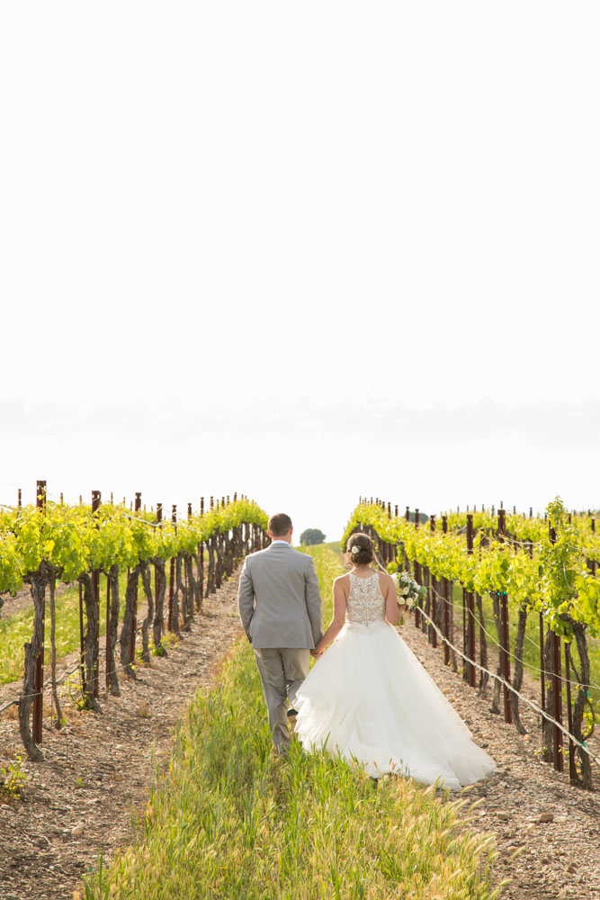 Paso Robles Wedding Photographer Terra Mia Vineyards 092.jpg