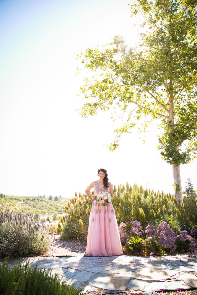 Paso Robles Wedding Photographer 010.jpg
