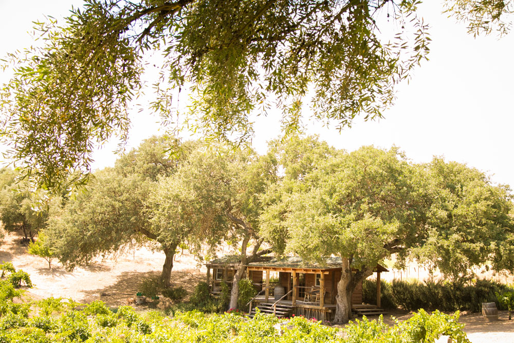 Paso Robles Wedding Photographer Still Waters Vineyards 002.jpg