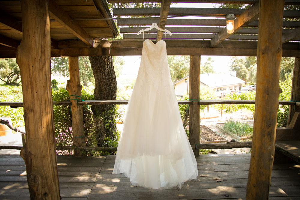 Paso Robles Wedding Photographer Still Waters Vineyards 018.jpg