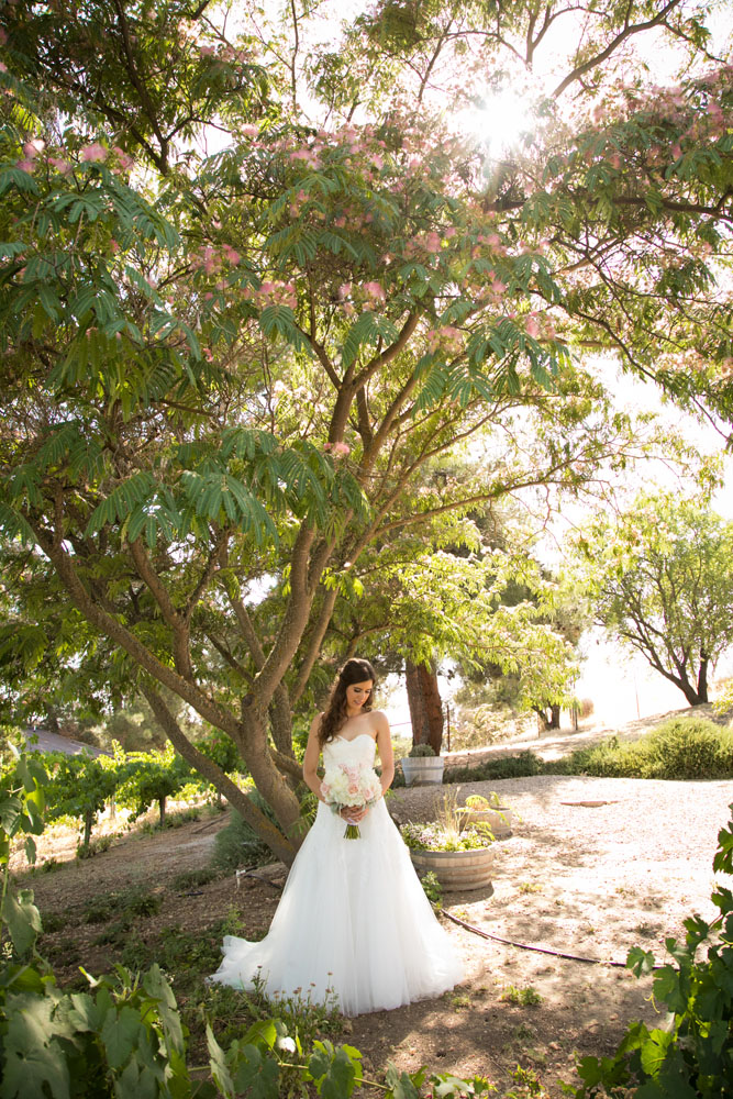 Paso Robles Wedding Photographer Still Waters Vineyards 041.jpg