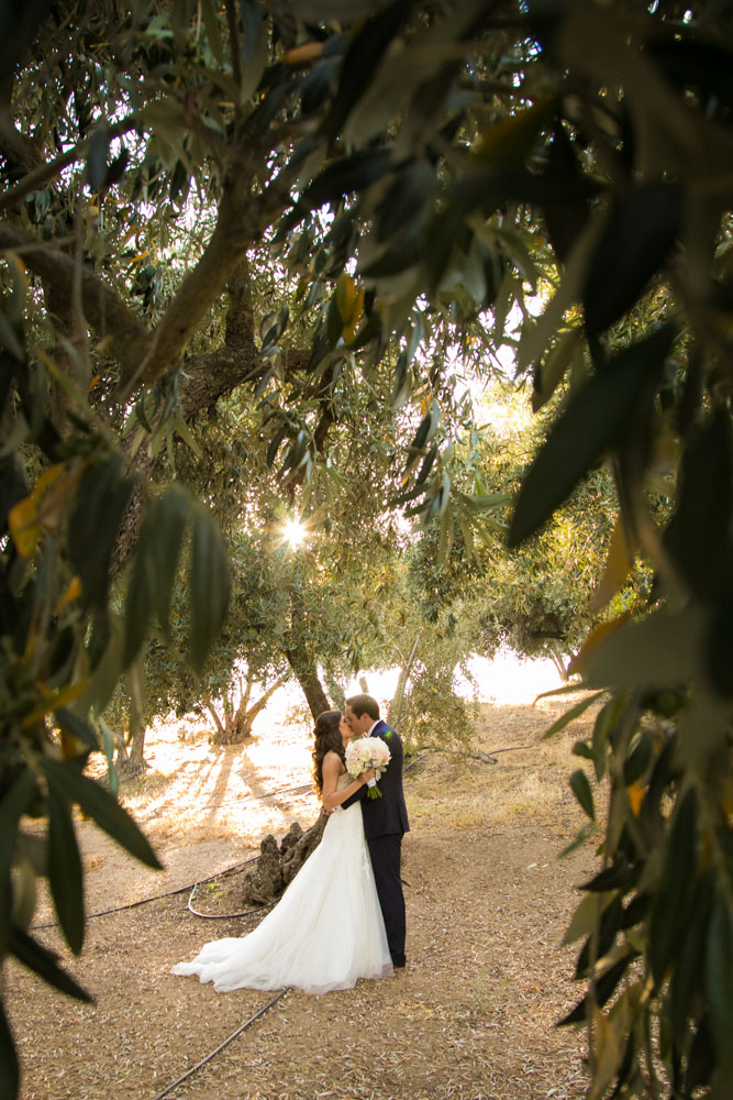 Paso Robles Wedding Photographer Still Waters Vineyards 102.jpg
