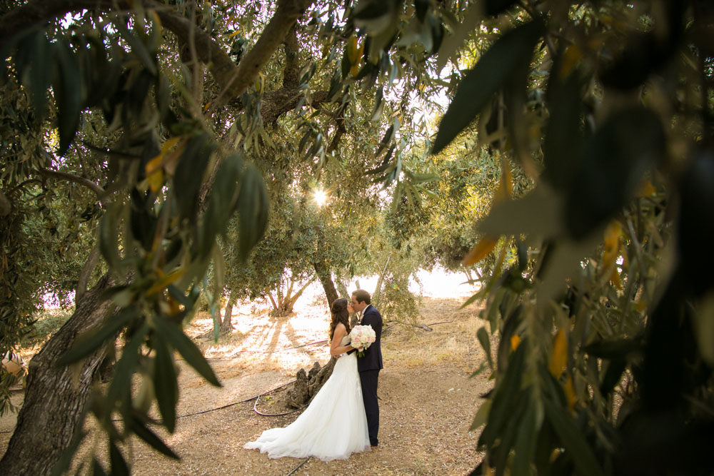 Paso Robles Wedding Photographer Still Waters Vineyards 103.jpg