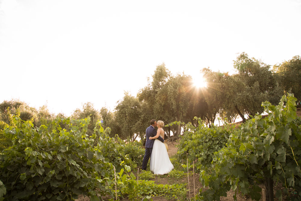 Paso Robles Wedding Photographer Still Waters Vineyard115.jpg