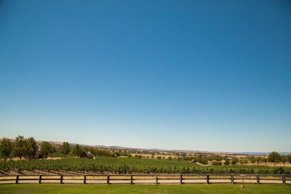 Paso Robles Wedding Photographer Windfall Farms 070.jpg