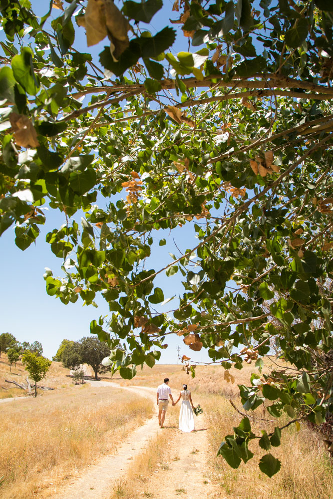 Paso Robles Wedding Photographer Windfall Farms 122.jpg