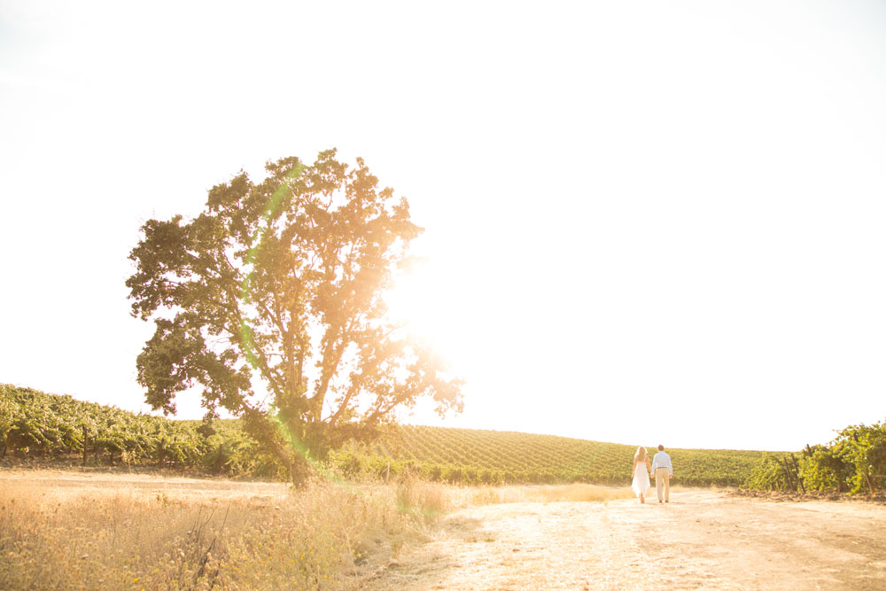 Paso Robles Wedding Photographer Vineyard Engagement Session 064.jpg