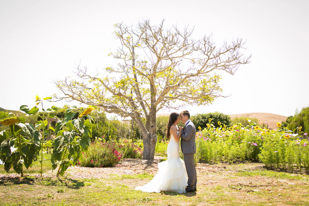 Cambria Wedding Photographer Stolo Family Vineyard  100.jpg