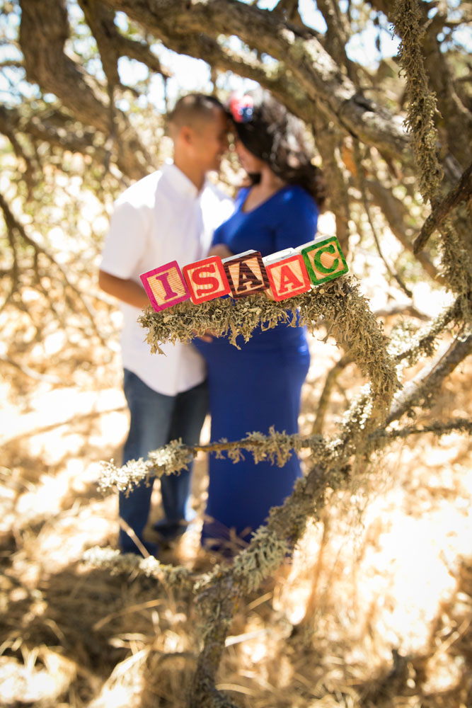Paso Robles Family Photography Maternity Session 031.jpg